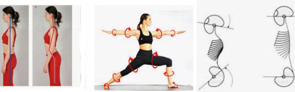 Yoga-Spiraldynamik®-Workshop am 21. und 22.03.2020 mit Brigitte Zehethofer